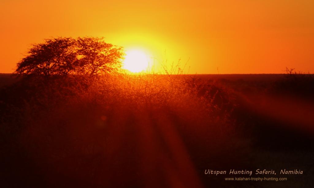 Kalahari Hunting Namibia