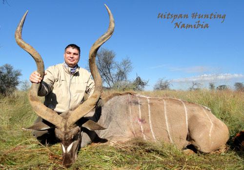 Kudu trophy hunting Namibia