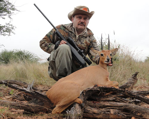 Steenbok trophy hunting Namibia