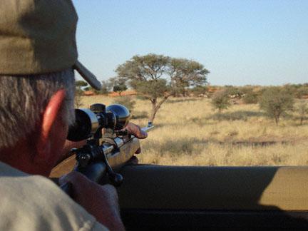 Booking: Kalahari Hunt, Namibia