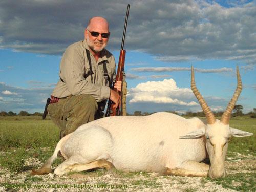 White Blesbok Hunt Namibia