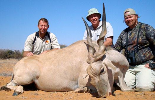 Namibia eland hunt
