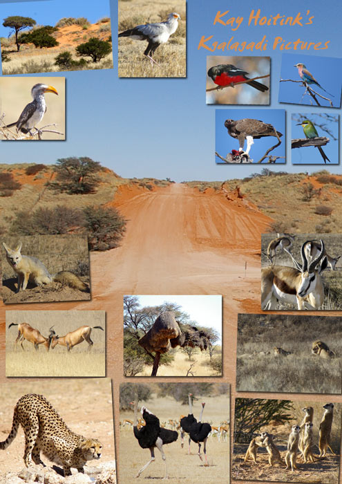 Kalahari, Namibia