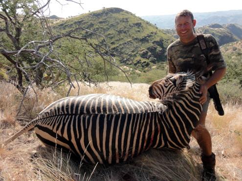 Namibia zebra hunting