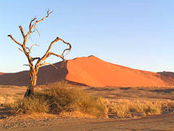 The spectacular Sossusvlei in Namibia