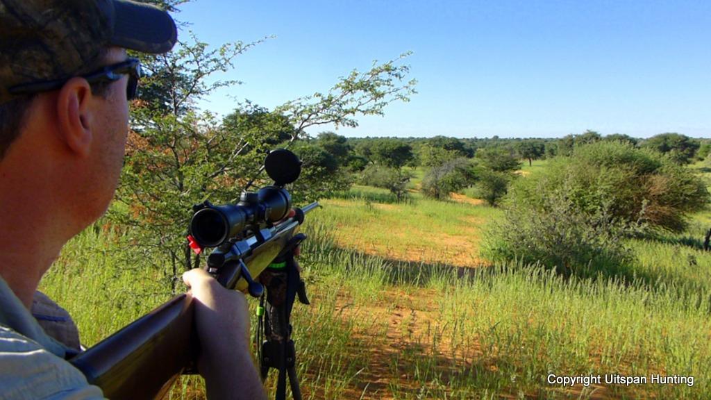 Kalahari Hunt Namibia
