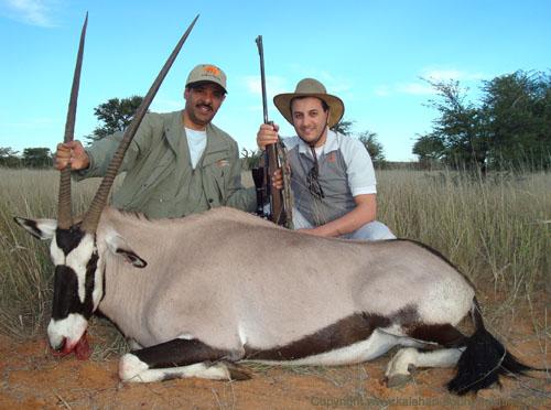 Gemsbok Hunt Namibia