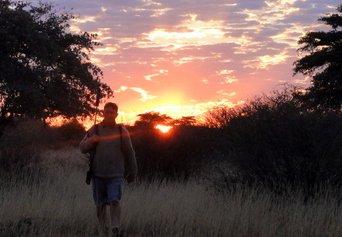 Kalahari hunt reflection