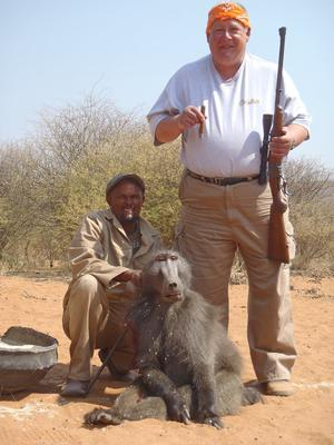 Namibian Baboon
